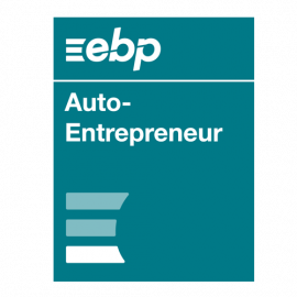 EBP auto-entrepreneur 2020